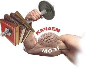 Память и свойства памяти